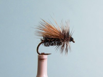 Peacock Caddis.JPG